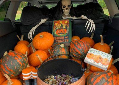 spooky-trunk